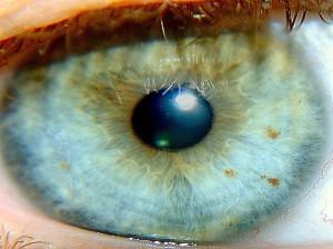 Huella digital - Dos hombres ciegos pudieron 'ver' con tecnología de cámaras fotográficas (01)