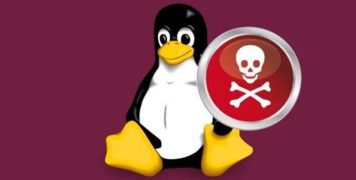 huella digital - Chaos Backdoor, un código que apunta a Linux