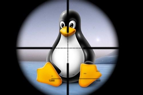 huella digital - Parches para corregir vulnerabilidades críticas en sistemas Linux actualice ahora